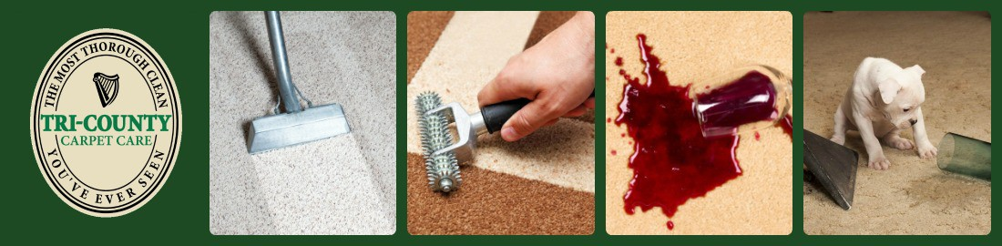 It S The Journey That Counts San Ramon Area Carpet Cleaning